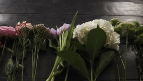 Medium close up footage of a colorful variety of flowers in bloom exposed in a row on a dark wooden surface.  stock footage