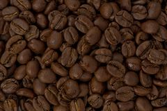 Medium-dark Roast Coffee Beans royalty free stock images