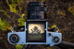 Medium format camera. Royalty Free Stock Image