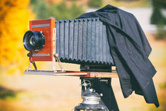 Medium format vintage film plate camera Stock Photos