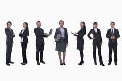 Medium group of business people in a row, portrait, full length, studio shot Stock Photography