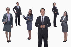 Medium group of smiling business people, portrait, full length, studio shot Stock Photos