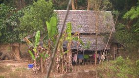 Traditional Burmese house in the forest, Myanmar. Medium high-angle still shot of a traditional Burmese house inside a forested highland. In front are un stock video