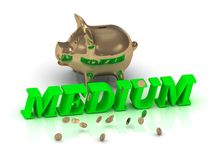 MEDIUM- inscription of green letters and gold Piggy Royalty Free Stock Image