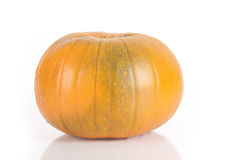 Medium isolated orange pumpkin Stock Image