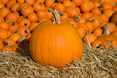 Medium Pumpkin on Hay Royalty Free Stock Images