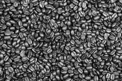 Medium roasted Arabica coffee beans. Monochrome, black and white Stock Image