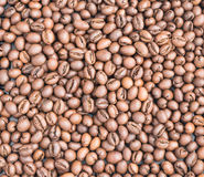 Medium Roasted Coffee Beans Stock Image