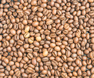 Medium Roasted Coffee Beans Royalty Free Stock Images