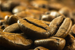Medium roasted coffee beans Stock Photo