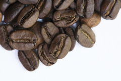 Medium Roasted Whole Coffee Bean. On white background Stock Image