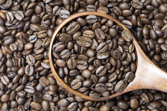 Medium Roasted Whole Coffee Bean. In wooden spoon on coffee bean background Royalty Free Stock Photography