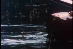Medium shot of fisherman catching fish using sharp stick stock video