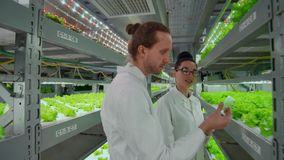 Medium shot of two scientists, man and woman, in white coats holding test tube and tablet computer and examining samples. While making soil tests in farm stock video