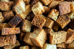 Medium-sized fried croutons Royalty Free Stock Images