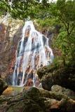 Medium waterfall and tree Stock Image