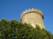 Medival castle tower among green trees Royalty Free Stock Photography
