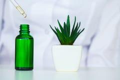 medizin Natürliche organische Medizin und Gesundheitswesen, alternative Betriebsmedizin, Mörser und Kräuterextraktion herein lizenzfreie stockfotos