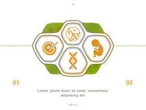 Medizin- und Schwangerschaftsikonen stock abbildung