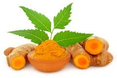 Medizinische Gelbwurzpaste mit neem Blättern Stockbilder