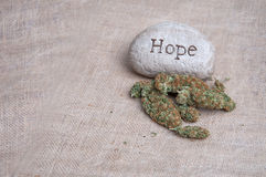 Medizinische Marihuana-Hoffnung Lizenzfreie Stockfotografie
