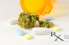 Medizinische Marihuanagebrauchsgesetzgebungs-Abstimmungsdebatte Stockfotografie