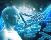 medizinischer Hintergrund 3D mit DNA-Strängen und Viruszellen Stockfotografie