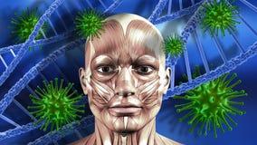 medizinischer Hintergrund 3D mit männlichem Gesicht, DNA-Strängen und Viruszelle Stockfotografie