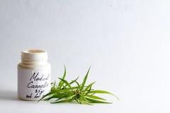 Medizinischer Marihuanahanf für die Behandlung eines Doktors lizenzfreies stockbild
