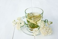 Medizinischer Tee der Schafgarbe in der Glasschale Lizenzfreies Stockbild