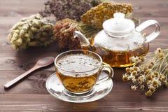 Medizinischer Tee mit Oregano Lizenzfreie Stockbilder