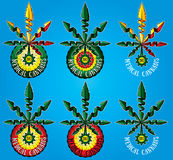 medizinisches Hanfmarihuanablatt-Symboldesign Lizenzfreie Stockfotos