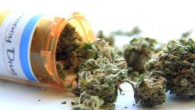 Medizinisches Marihuana 7 stock footage