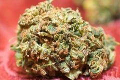 Medizinisches Marihuana Buds4 Lizenzfreie Stockfotos