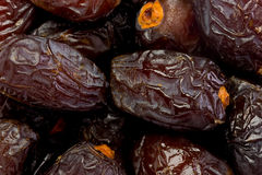 Medjool Dates. Background texture of medjool dates Stock Photography