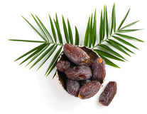Medjool dried date fruits Royalty Free Stock Images