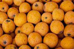 Medlar background Royalty Free Stock Photos