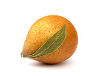 Medlar fruit Stock Images