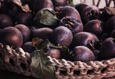 Medlar. Fruit in a basket Stock Photography