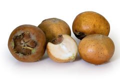 MEDLAR or MISPEL (MESPILUS GERMANICA) Stock Photo