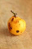 Medlar from organic farming Royalty Free Stock Image