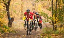 Medlemmar av konkurrens för cykellopp som passerar sista kilometer i lopp royaltyfria foton