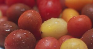Medley of heirloom grape cherry tomatoes.