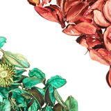 Medley potpourri copyspace composition Royalty Free Stock Photography