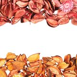 Medley potpourri copyspace composition Royalty Free Stock Photos