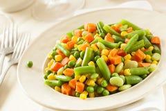 Medly di verdure organico cotto a vapore immagine stock libera da diritti