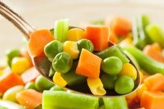 Medly di verdure organico cotto a vapore immagini stock