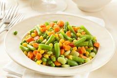 Medly vegetal orgânico cozinhado foto de stock