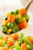 Medly vegetal orgânico cozinhado fotos de stock
