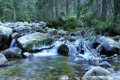 Medodolsky potok, Javorova dolina, Vysoke Tatry Royalty Free Stock Photography